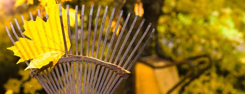 a garden fork
