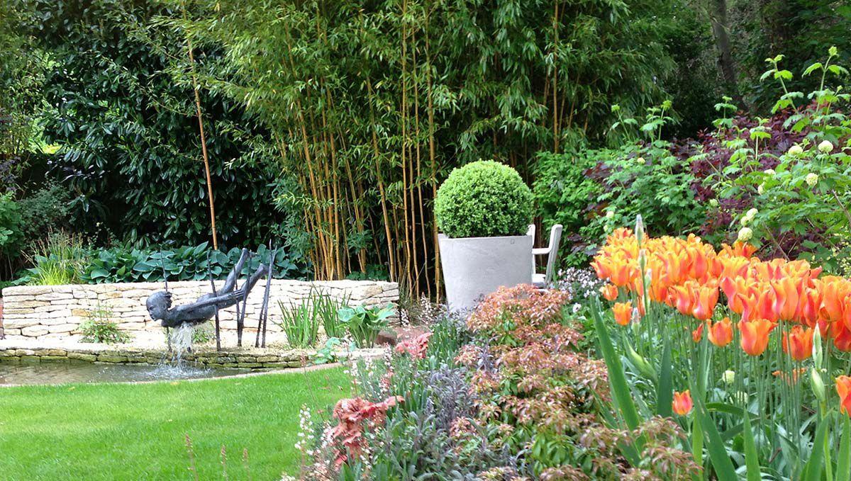 Tulips in a garden built by Morgan Oates - West London landscape gardeners